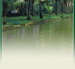 Kerala Tourism India