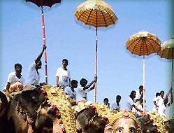 decorated Elephants during Kerala Festivals